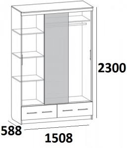 Шкаф-купе_SN-3.4_(Венге)1