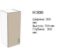 н 300