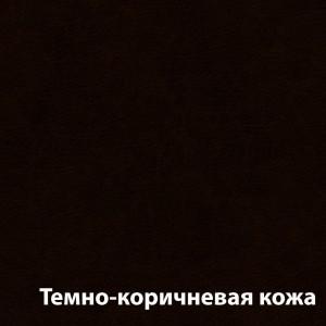 Temn-korichnevaya__2