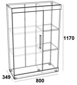 Шкаф книжный 800